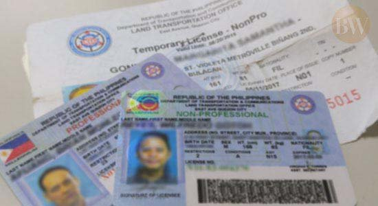 the Philippine driver's licenses