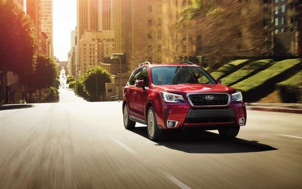 the Subaru Forester on the road