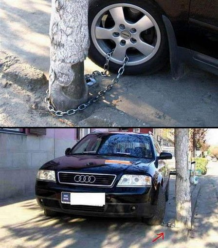An Audi being tied to a tree