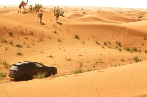 2018 Porsche Cayenne running on sand