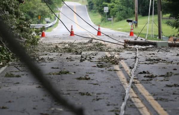 downed power lines and fallen trees on the road