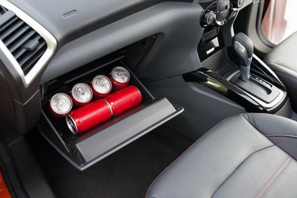 EcoSport Cooler
