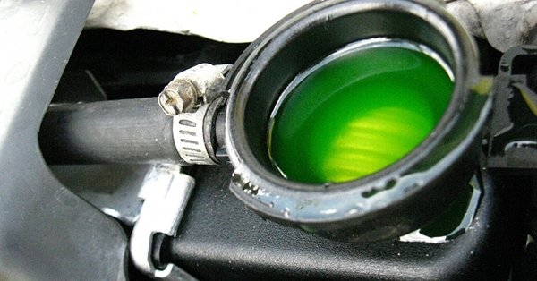 antifreeze in car radiatior