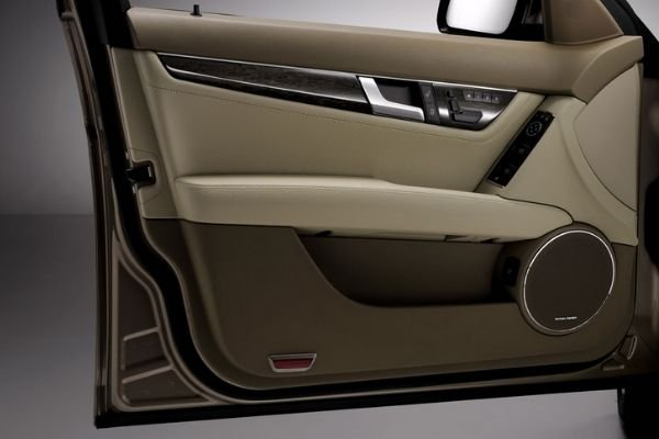 A picture of a car's interior door panels.