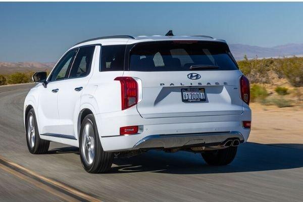 2020 Hyundai Palisade Rear view