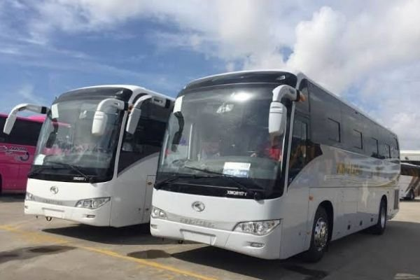 A picture of two Kinglong XMQ117Y buses parked side by side.