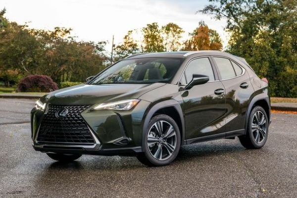 A picture of the Lexus UX in a park