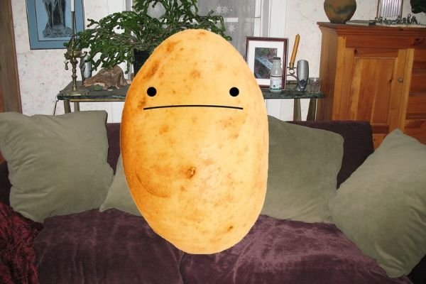 A picture of a couch potato