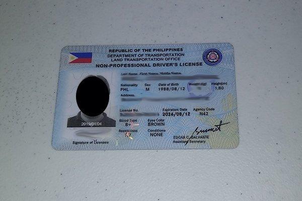 LTO Non-Professional Driver's License