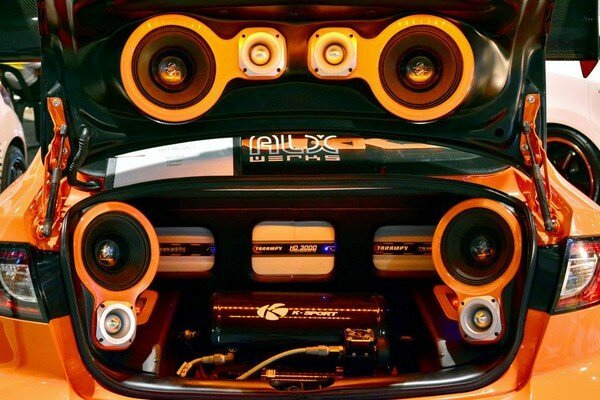 Speaker and subwoofers of a car