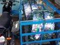 Isuzu Ivan 2015 White MT For Sale-10