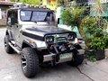 Wrangler Jeep STAINLESS Version Isuzu C240 Diesel 5 Speed MT w/ Aircon (HEADTURNER/PORMADO/RARE) Car-0