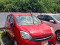 Sell Red 2017 Toyota Wigo  in used-1