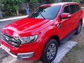 Red Ford Everest 2018 for sale in Caloocan-9