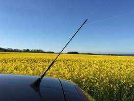 Car buying tips - Things you might not know about car antenna