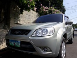 2014 Ford Escape for sale in Manila