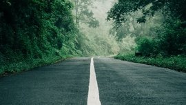 White lines on the road: What makes them different from Yellow lines