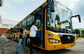 P2P bus system: 8 routes and 85 buses
