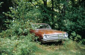 Story of a haunted 1964 Dodge 330 that killed at least 14 people in the US