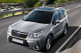 Subaru, Lipa