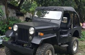 Well-kept JEEp ala cardo dalisay for sale