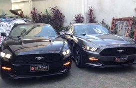2019 Brandnew FORD Mustang Premium Edition 23 Ecoboost New Arrivals