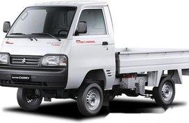 2019 Suzuki Super Carry 0.8 TRUCK MT for sale