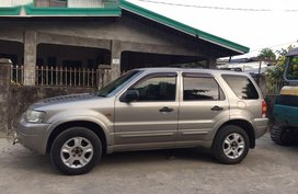 2nd Hand Ford Escape 2005 Automatic Gasoline for sale in Rosario