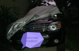 2014 Ford Everest for sale in San Jose del Monte