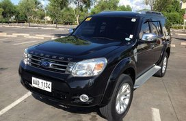 2014 Ford Everest for sale in Quezon