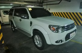 2014 Ford Everest for sale in Taytay