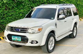 2014 Ford Everest for sale in Cebu City