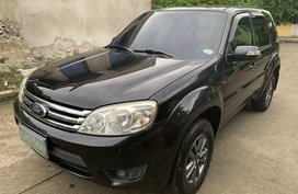 Ford Escape 2009 for sale in Las Piñas