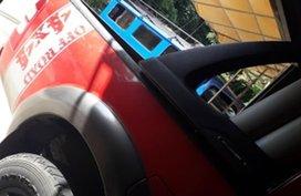 2009 Ford Ranger for sale in Naga