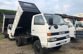 Selling Isuzu Elf 2019 Truck in Mandaue