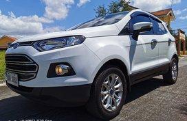 2017 Ford Ecosport 1.5L Titanium (Top of the Line)