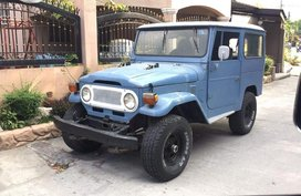 Sell Blue 1978 Toyota Land Cruiser in San Fernando