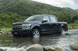 Ford F-150 Platinum 3.5 EcoBoost 4x4 AT
