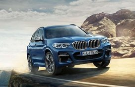 BMW X3 xDrive20d Business 2.0 AT