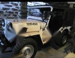 Willys owner jeep swap sa small car like alto