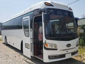 Well-kept Korean Bus Kia Granbird Parkway 2016 for sale