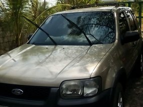 Ford Escape 2004 A/T Golden For Sale