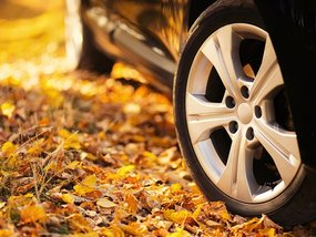 5 Common Causes of Wheel Bearing Woes