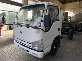 Brand New Isuzu Elf 2019 Truck for sale in Pasay
