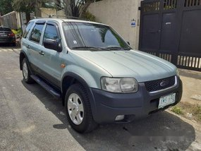 Used Green Ford Escape 2004 Automatic Gasoline at 47000 km for sale  in Manila