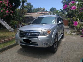 Well Maintained 2009 Ford Everest for sale in Zamboanga City