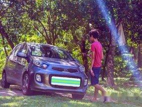 Grey Kia Picanto 2016 Automatic Gasoline for sale