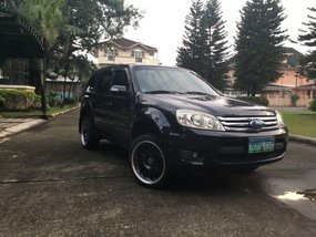 2010 Ford Escape for sale in Pasig