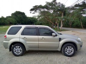 Sell 2010 Ford Escape Automatic Diesel at 90000 km