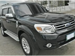 2014 Ford Everest for sale in Malolos